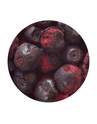 Freeze Dried Whole Blueberry 100gm