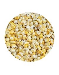 Freeze Dried Corn Kernels 100gm