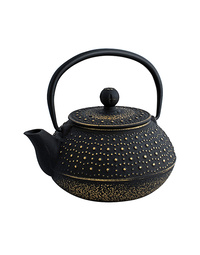 Avanti Brushed Cast Iron Teapots